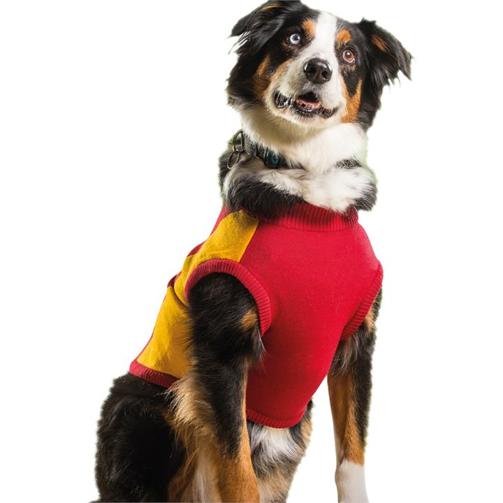 AFL Dog Medium 47cm Jumper Gold Coast Suns