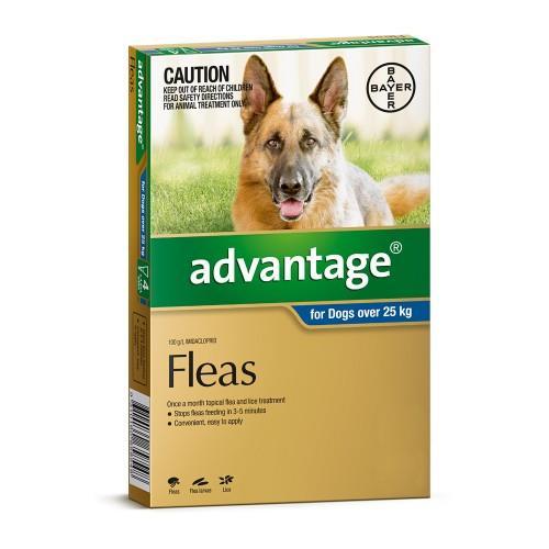 Advantage Extra Large Over 25kg Blue 4 pack