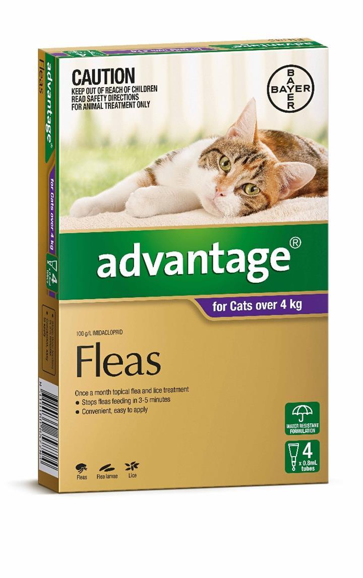Advantage Flea Treatment for Cats over 4kg