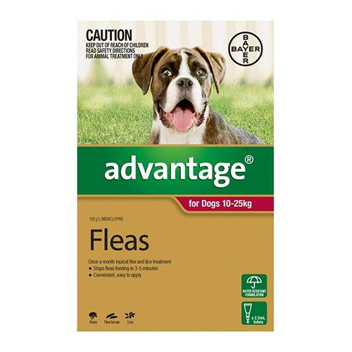 Advantage For Dogs 10-25Kg Red 4 Pack