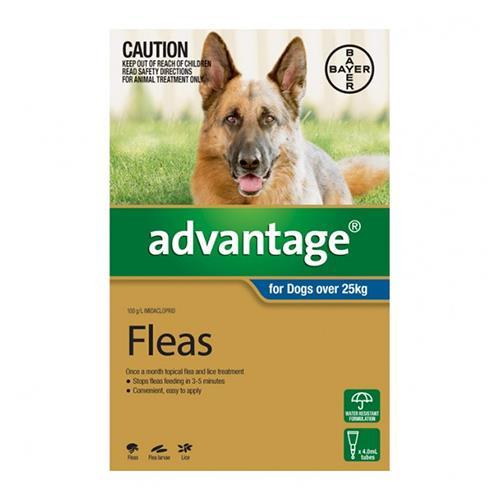 Advantage For Dogs Over 25Kg Blue 4 Pack