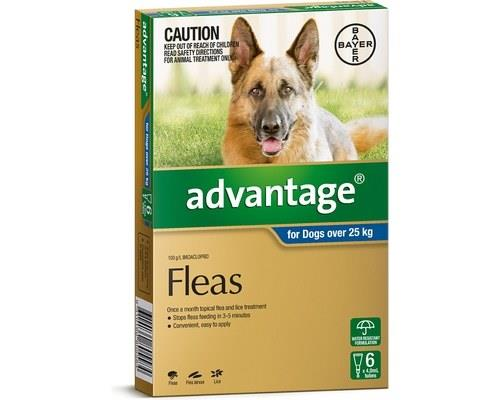 Advantage For Extra Large Dogs Over 25kg 6 Pack (blue)