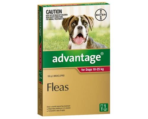 Advantage For Large Dogs 10-25kg 1 Pack (red)