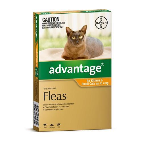 Advantage Kitten and Small Under 4kg Orange 4 pack