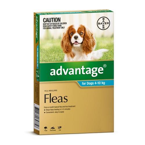 Advantage Medium 4-10kg Teal 4 pack