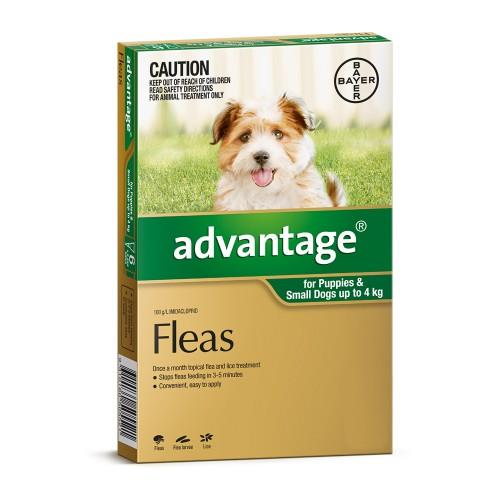 Advantage Small Dogs and Puppies Under 4kg Green 4pk