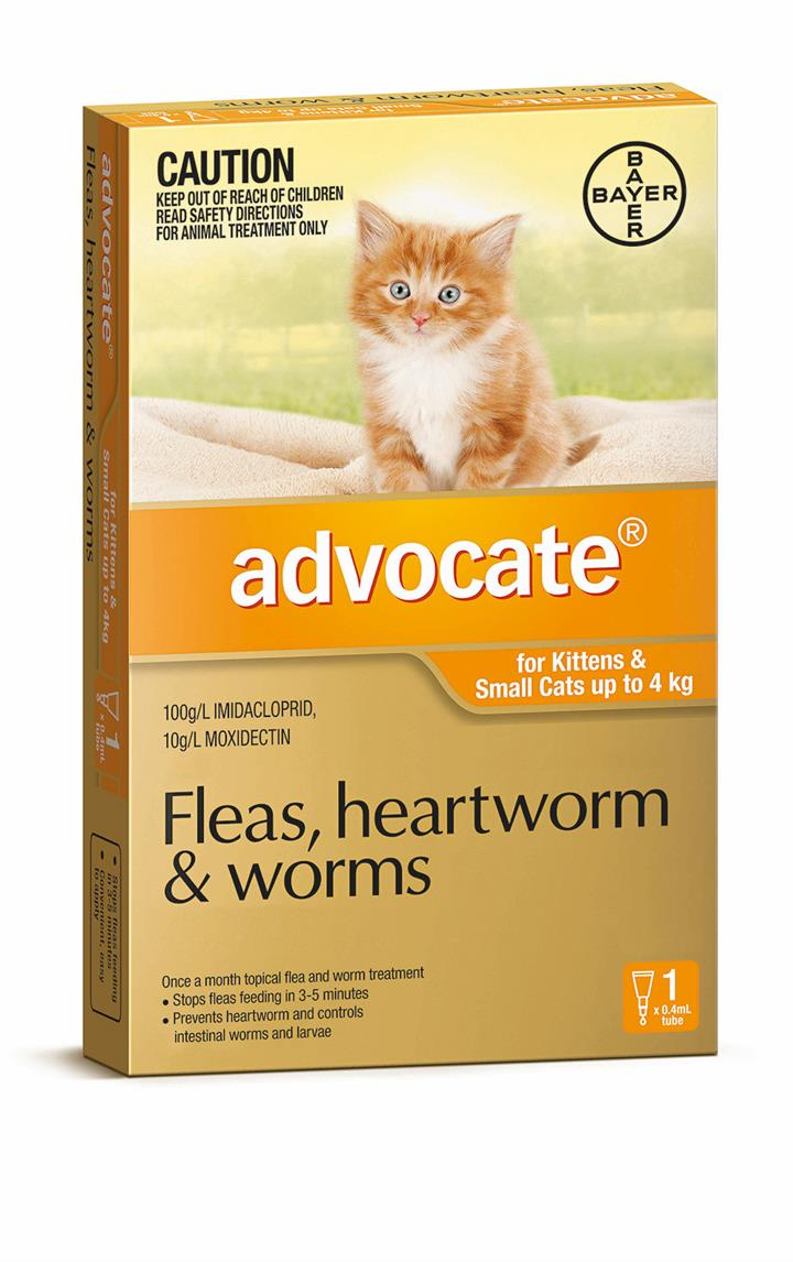 Advocate Cat Bayer Pack of 1 0-4KG Small Orange