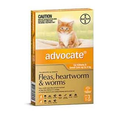 Advocate Cat Bayer Pack of 3 0-4kg Small Orange