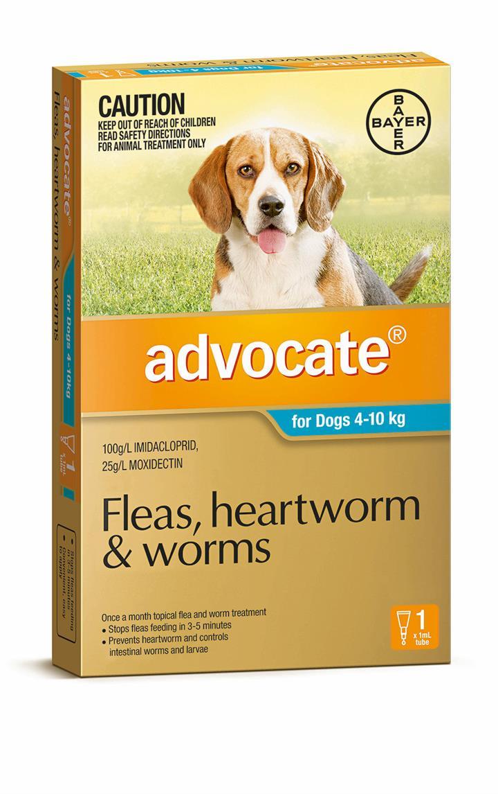 Advocate Dog Bayer Pack of 1 4-10KG Medium Teal