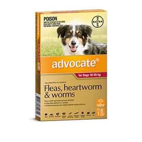 Advocate Dog Bayer Pack of 6 10-25kg Large Red