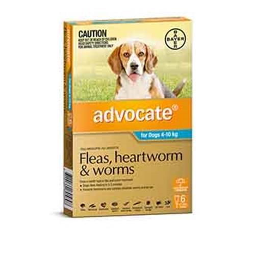 Advocate Dog Bayer Pack of 6 4-10kg Medium Teal