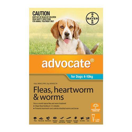 Advocate Dog Medium Aqua 3 Pack