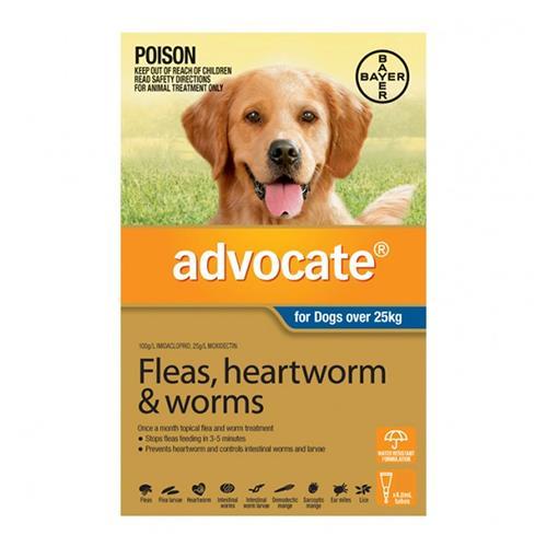 Advocate Dog XL Blue 3 Pack