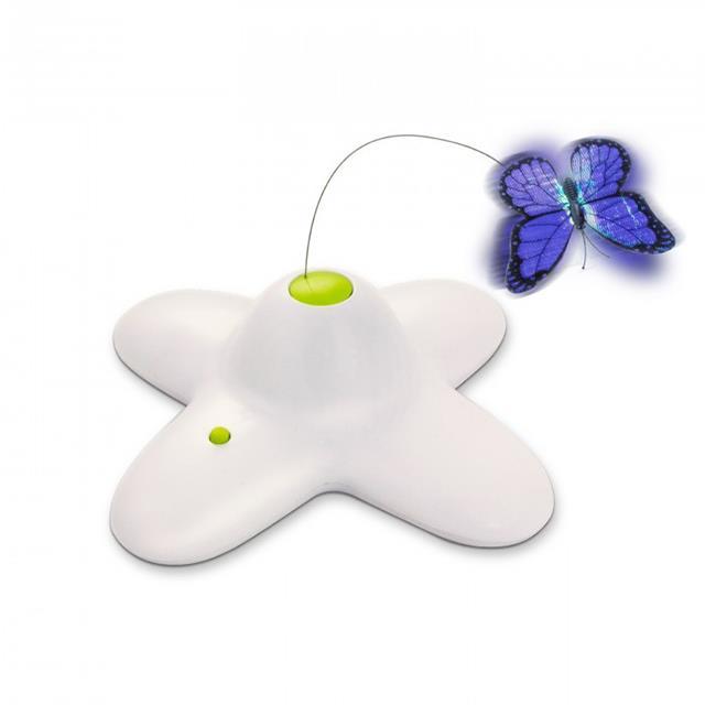 Afp Interactive Flutter Bug Each