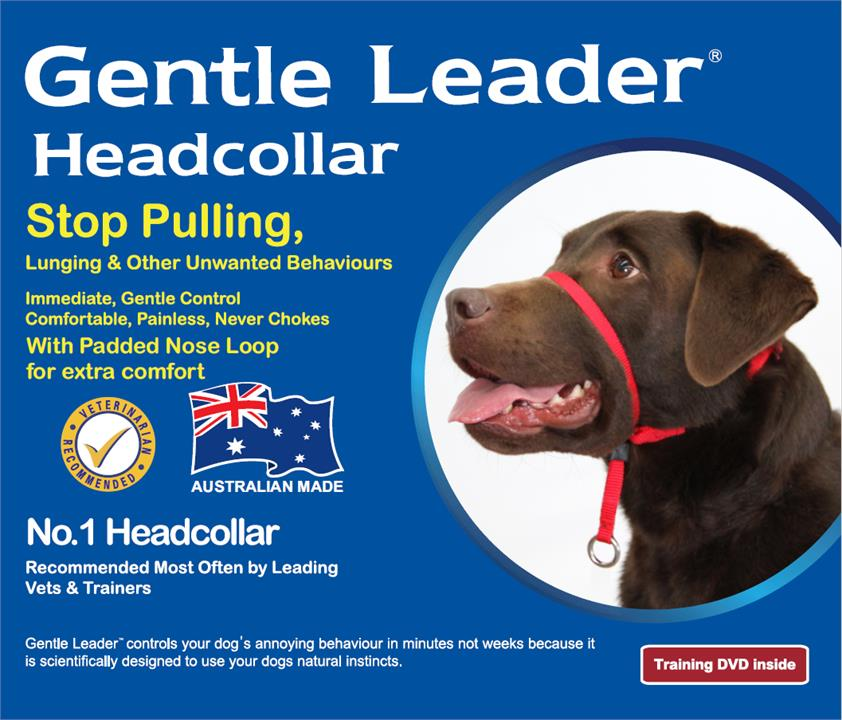 Beau Pets Gentle Leader Head Halter Collar Blue