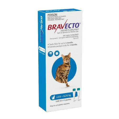 Bravecto Cat Medium 2.8-6.25kg Blue Spot On Treatment 2 pack