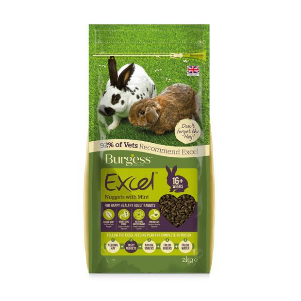 Burgess Excel Rabbit Nuggets Mint 2kg