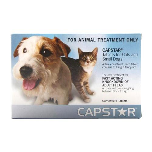Capstar for Cats and Small Dogs 0.5-11kg 6 pack