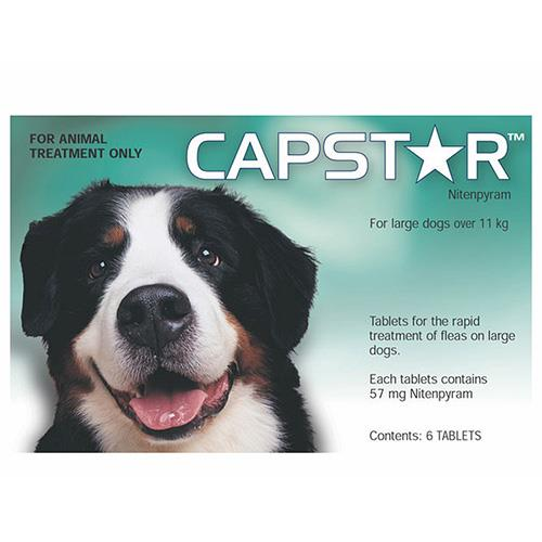 Capstar for Large Dogs over 11Kg (Green) 6 Tablet
