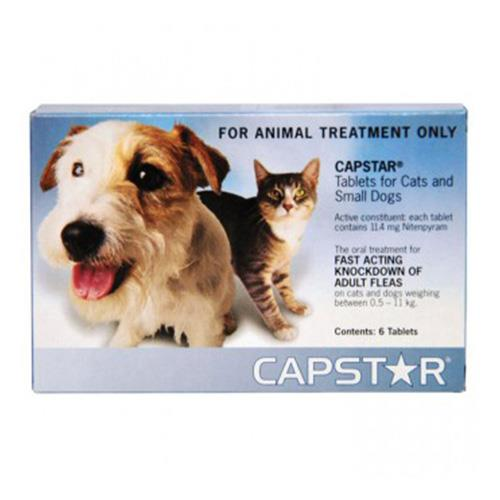 Capstar for Small Dogs 0.5 To 11Kg (Blue) 6 Tablet