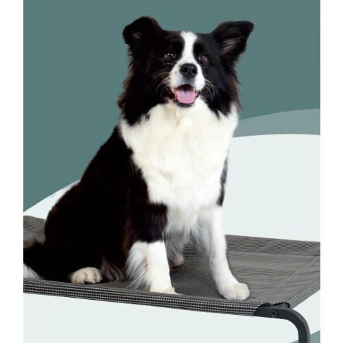 Cara Pet Elevated Trampoline Pet Bed Medium