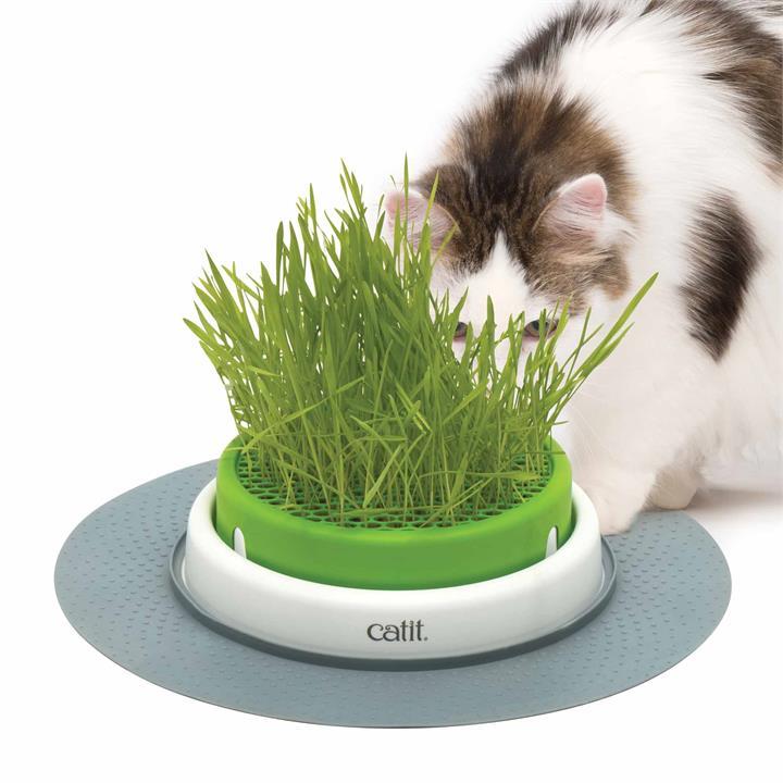 Catit 2.0 Senses Grass Planter