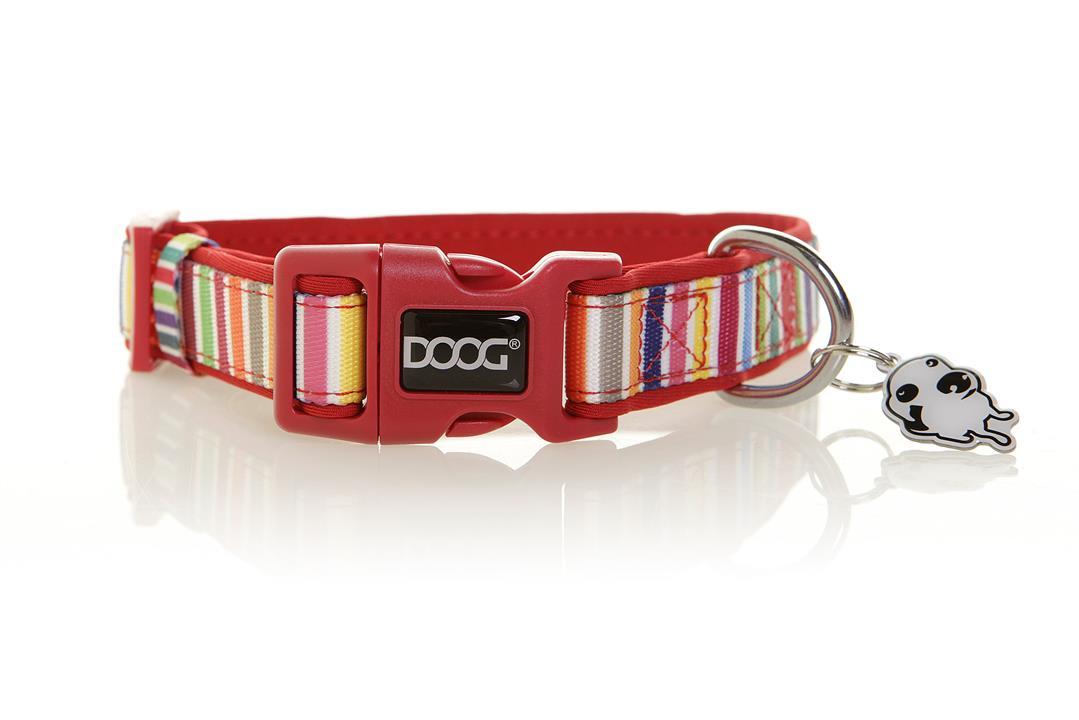 Doog Scooby Medium Collar Candy Striped