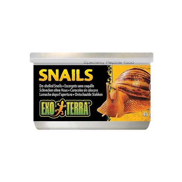 Exo Terra Snails Unshelled 48g