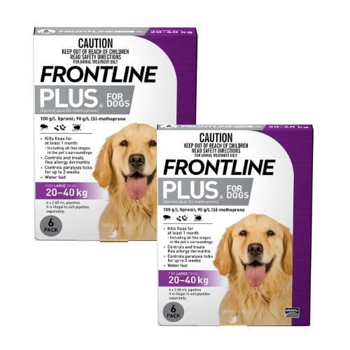 Frontline Plus Large 20-40kg Purple 12 pack