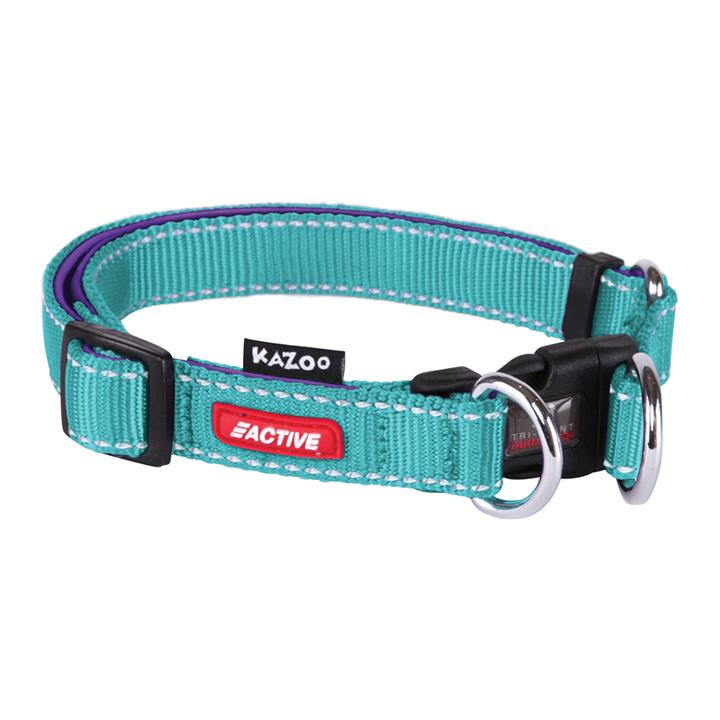 Kazoo Active Adjustable Nylon Dog Collar Aqua & Purple