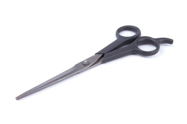 Kazoo Grooming Scissors