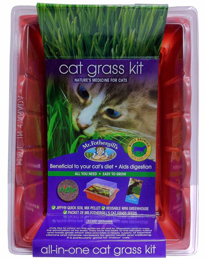 Mr Fothergill's Cat Grass Kit