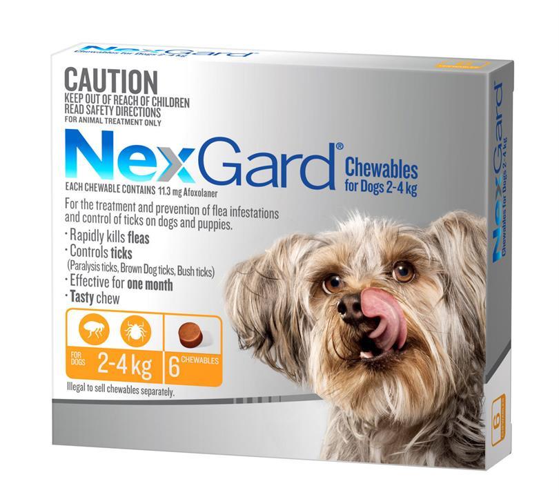 NEXGARD FOR DOGS 2-4KG - Orange 6 Pack