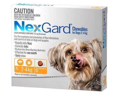 Nexgard For Dogs 2-4kg 6 Pack (orange)