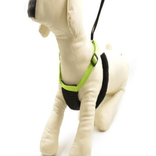 Rascals Non-Pull Harness Large