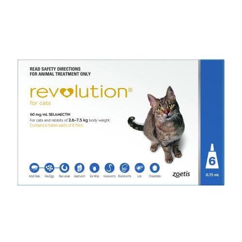Revolution Blue 6 pack