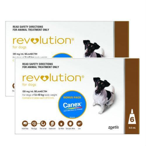 Revolution Brown Small 5.1-10kg 12 pack