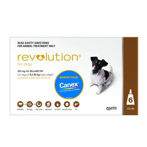 Revolution Brown Small 5.1-10kg 6 pack