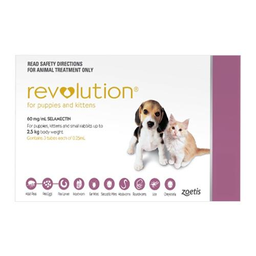 Revolution For Puppies Pink 6 Pack