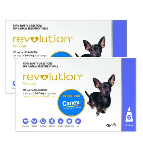 Revolution Purple Extra Small 2.6-5kg 12 pack
