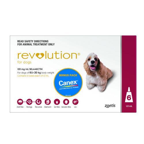 Revolution Red Medium 10-20kg 6 pack