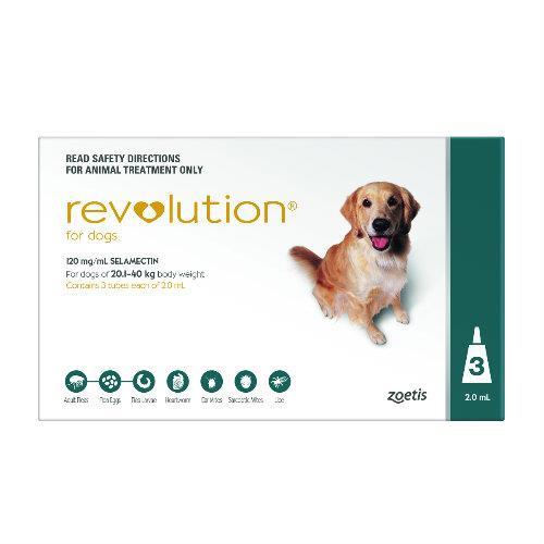 Revolution Teal Large 20-40kg 3 pack