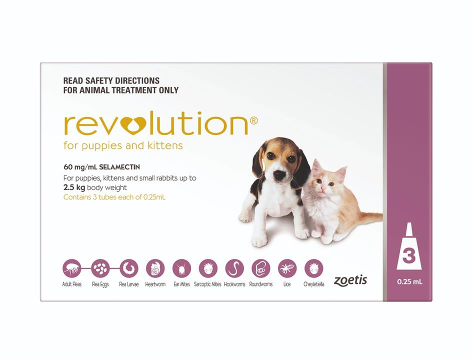 Revolution for Puppies and Kittens Pack of 3