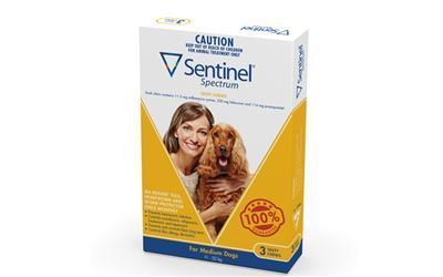Sentinel Spectrum Chews Medium Yellow 3 pack