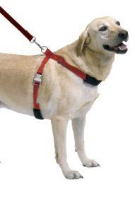 Sporn Simple Control Harness Black Extra Large