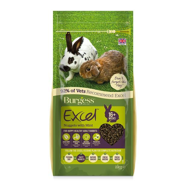 Burgess Excel Rabbit Pellets With Mint 10kg